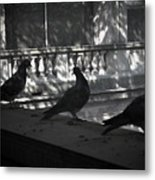Holding Court Metal Print