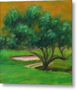 Hole 14 Split The Difference Metal Print