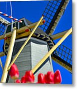 Holland Metal Print
