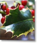 Holly Berries- Photograph By Linda Woods Metal Print