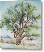 Holly Tree Metal Print