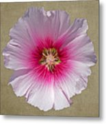 Hollyhock On Linen 2 Metal Print