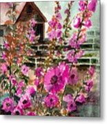 Hollyhocks And Barn Metal Print