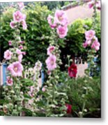 Hollyhocks Taos New Mexico Metal Print