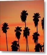Hollywood Sunset Metal Print