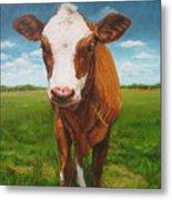 Holy Cow Metal Print