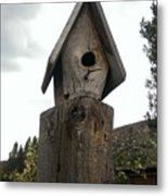 Home For The Birds Metal Print