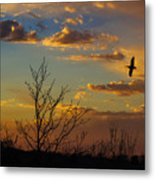 Home For The Night Metal Print
