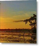 Home Home On The Swamp Metal Print