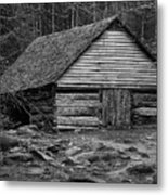 Home In The Woods Bw Metal Print