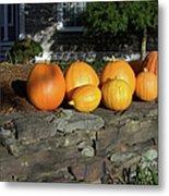 Homegrown Pumpkins Metal Print