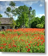 Homestead In The Poppies Metal Print