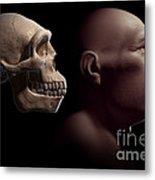 Homo Erectus With Skull Metal Print