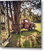 Honey, Under The Cedar Tree Metal Print