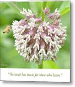 Honeybee And Milkweed Flowers Metal Print