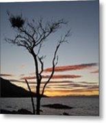 Honeymoon Bay - Tasmania Metal Print