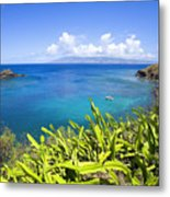 Honolua Bay Metal Print