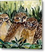 Hoo Is Looking At Me? Metal Print