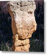 Hoodoo In Bryce Canyon Metal Print