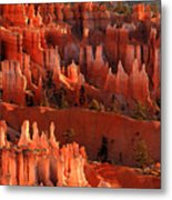 Hoodoos Of Sunset Point At Sunrise  In Bryce Canyon Metal Print