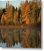 Hooker Lake Reflections Metal Print