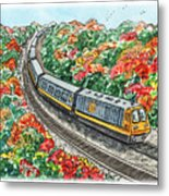 Hop On A Train Metal Print