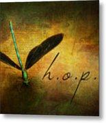Hope Ebony Jewel Wing Damselfly On Golden Sunlight Dragonfly Metal Print