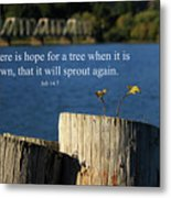 Hope For A Tree Metal Print