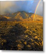 Hope From Desolation Metal Print