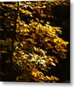 Hope Leaves Metal Print