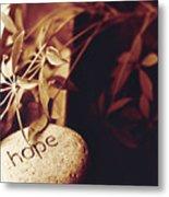 Hope Stone 1 Metal Print