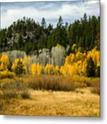 Hope Valley Metal Print