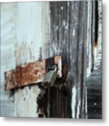 Hopelessly Locked Metal Print