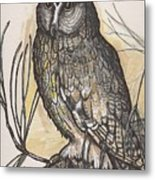 Horned Owl And Pine Metal Print
