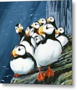 Horned Puffins At Rest Metal Print
