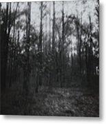 Horror In The Woods Metal Print