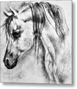 Arabian Horse 1 By Diana Van Metal Print