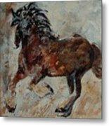 Horse 561 Metal Print