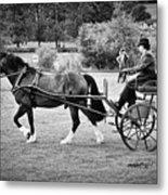 Horse And Cart Metal Print
