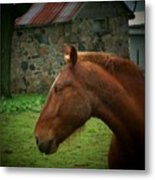 Horse And Shed Metal Print