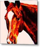 Horse Art Horse Portrait Maduro Red With Yellow Highlights Metal Print