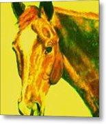 Horse Art Horse Portrait Maduro Yellow Metal Print