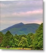 Horse Drawn Carriage At Muckross House Metal Print