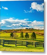 Horse Farm 6 Metal Print