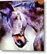 Horse I Will Follow You Metal Print