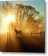 Horse In The Fog At Dawn Metal Print