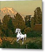 Horse Mountain And Barn Metal Print