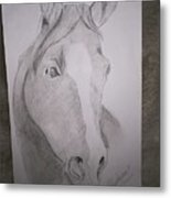Horse On Paper  Metal Print