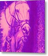 Horse Painting Jumper No Faults Hot Pink Metal Print