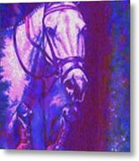 Horse Painting Jumper No Faults Purple And Blue Metal Print